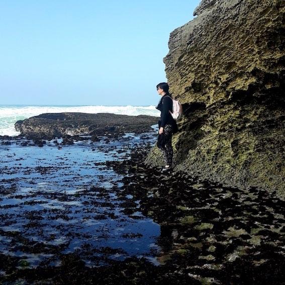 Interpretive marine walk at the De Hoop Nature Reserve