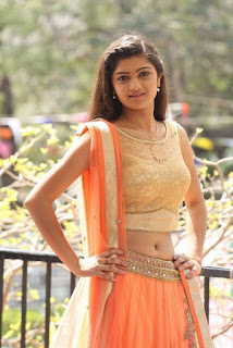 Actress Pallavi Naidu Stills in Half Saree at Lord Shiva Creations New Movie Launch 0014.jpg