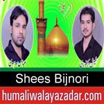 https://www.humaliwalyazadar.com/2018/09/shees-bijnori-nohay-2019.html
