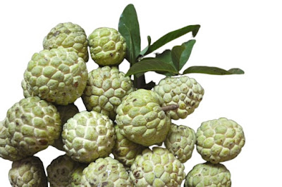 eating custard apple benefits for health [Sitaphal Seeds]