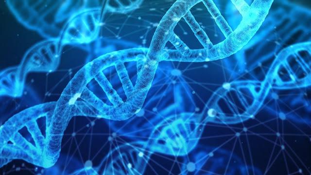 Traguardo per la medicina, completato il sequenziamento del Genoma umano