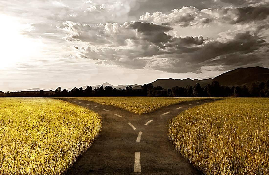 dos caminos ante la filofobia