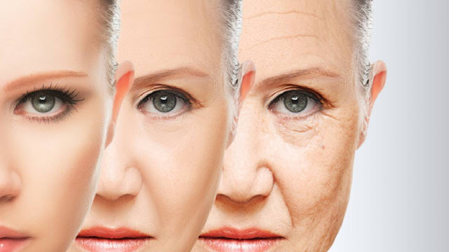 One of the most effective anti aging diet care programs For You.