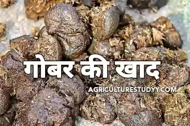 गोबर की खाद (Farm yard Manure in hindi)