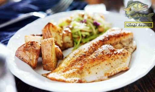 السمك البلطي: الأنواع ، الفوائد ، الأضرار | فوائد سمك البلطي