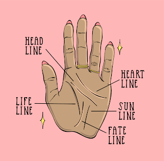 What Are The Principles To See A Palm | Palm Reading