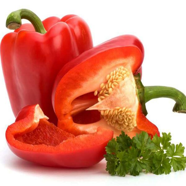 Paprika Merah, Khasiat Paprika Merah, Manfaat Paprika Merah