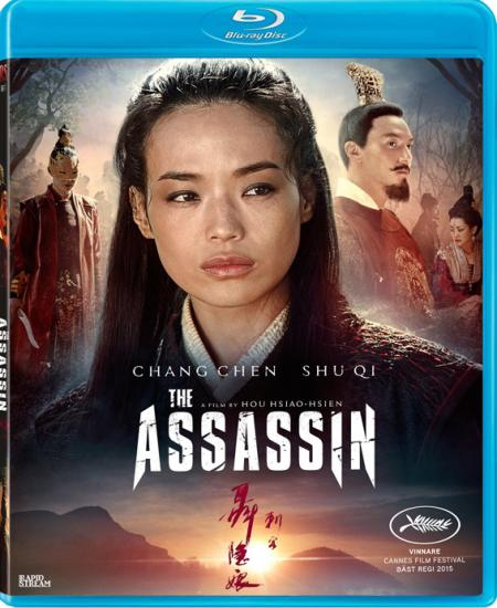 The Assassin 2015 Dual Audio Hindi-Eng BluRay 480p x264 AAC ESub 350MB Download
