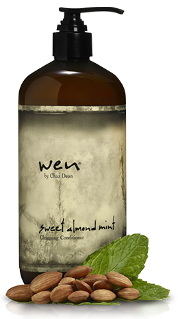 Wen Shampoo And Conditioner >> FOCUS ON HAIR: Cleansing Conditioner by WEN
