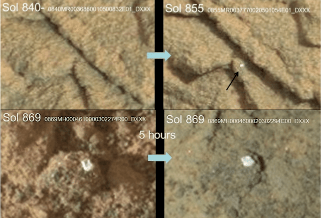 Scientists Claim to Spot Fungus Growing on Mars in NASA Rover Photos