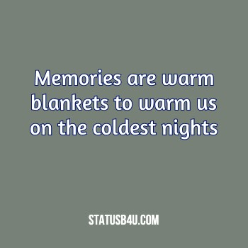 Quotes & Status About Memories