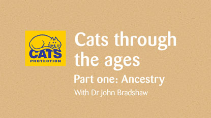 Cats through the ages: Ancestry