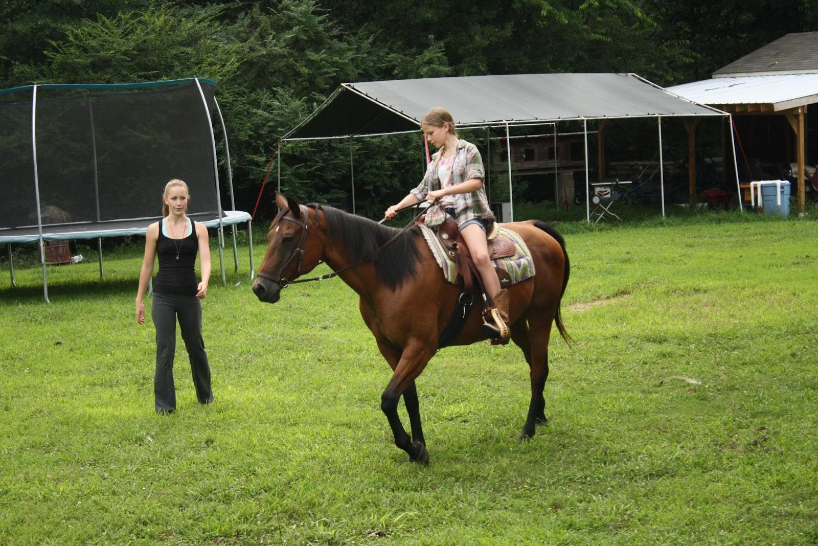 My Barefoot Farm Here Horsey Horsey