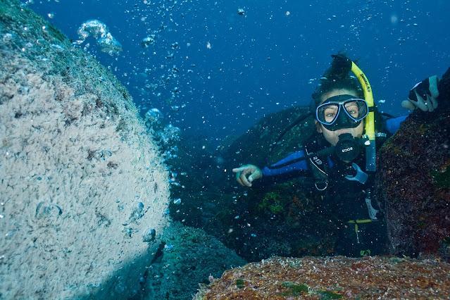 Sobreviviendo contra viento y marea: Un viaje científico hacia la supervivencia de nuestros océanos