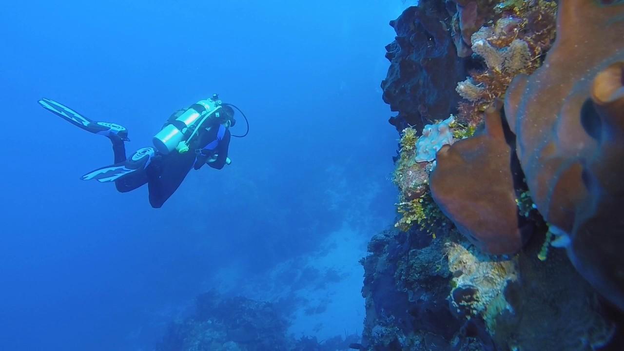 Подводное плавание в Косумеле