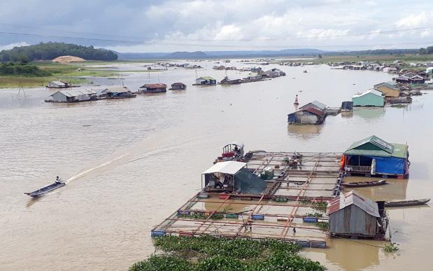 Nguồn nước hệ thống sông Đồng Nai có nguy cơ gia tăng ô nhiễm