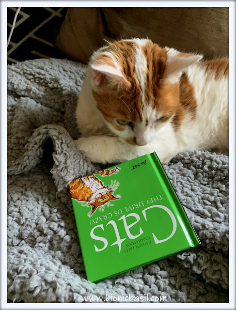 Book Reviews with Amber  #141 ©BionicBasil® Cats They Drive Us Crazy
