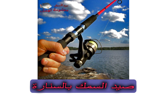 تعليم صيد السمك بالسنارة للمبتدئين (صيد السمك بالسنارة)