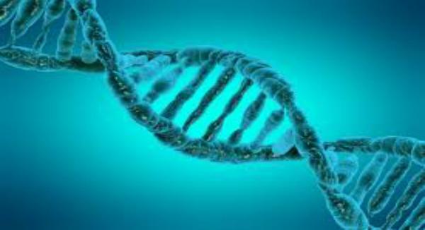 مايكروسوفت تخطط لتخزين البيانات في الحمض النووي !