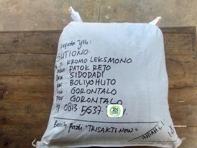 Benih pesanan SUTIONO Gorontalo.   (Setelah Packing)