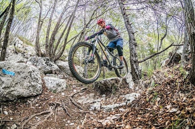 coast trail mountainbike bike mtb touren track trail altissimo