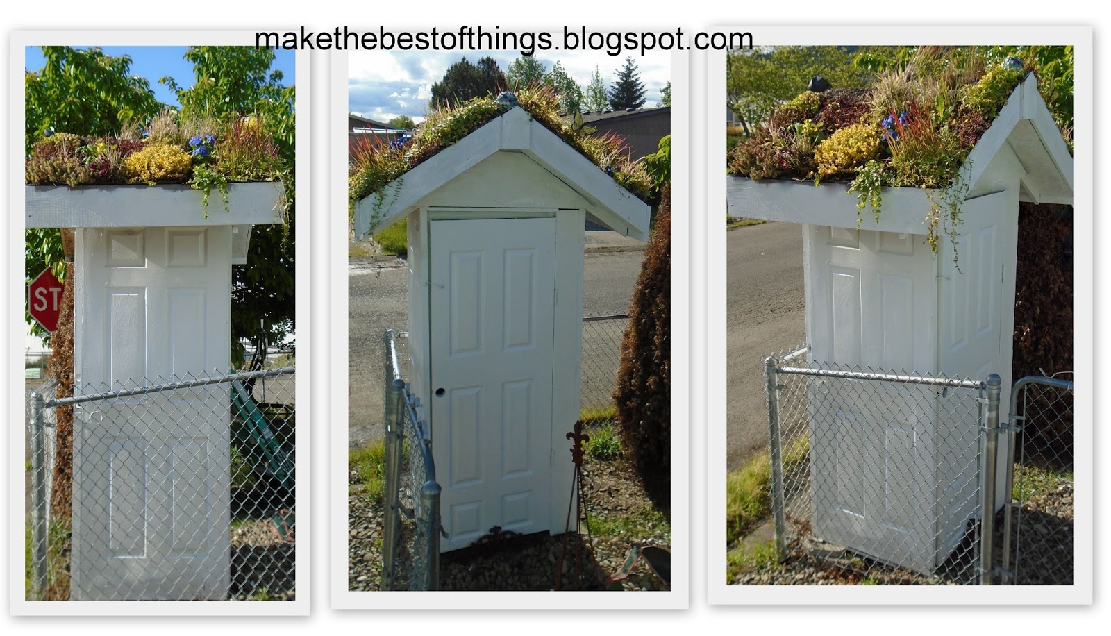 make the best of things a living plant roof on our shed. Black Bedroom Furniture Sets. Home Design Ideas
