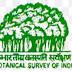 botanical survey of india 2017