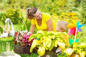 A Few Handy Summer Gardening Tips