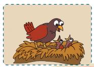 burung www.jokowidodo-marufamin.com