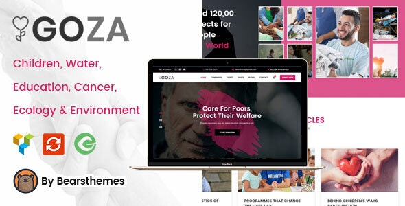 21+ Best Responsive WordPress Themes for Charities and NGOs