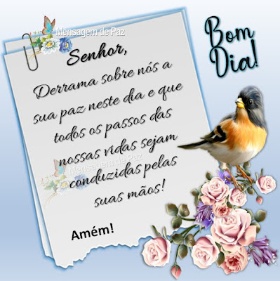 Senhor, Derrama sobre nós a sua paz  neste dia e que todos os passos das nossas  vidas sejam conduzidas pelas  suas mãos! Amém! Bom Dia!