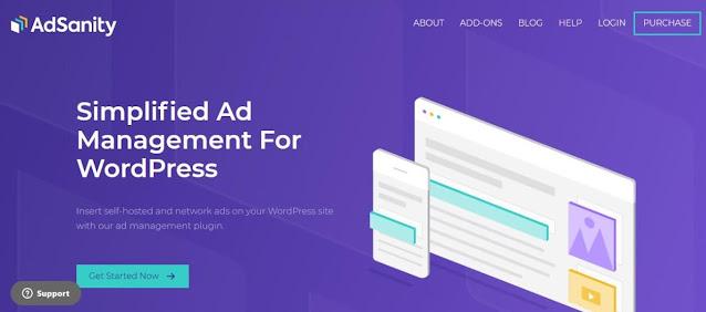 Plugin pengelola iklan untuk menghasilkan uang dari blog.