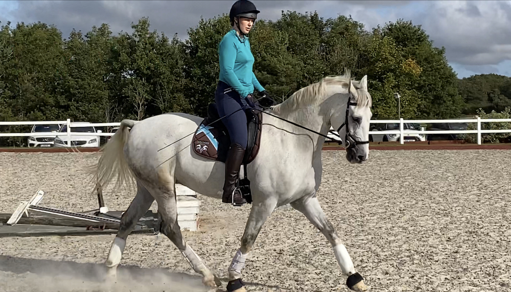 Team Tunnah Equestrian Blog Dressage Training 19.09.2020