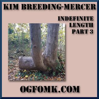 Indefinite Length, Part 3 -- Kim Breeding-Mercer