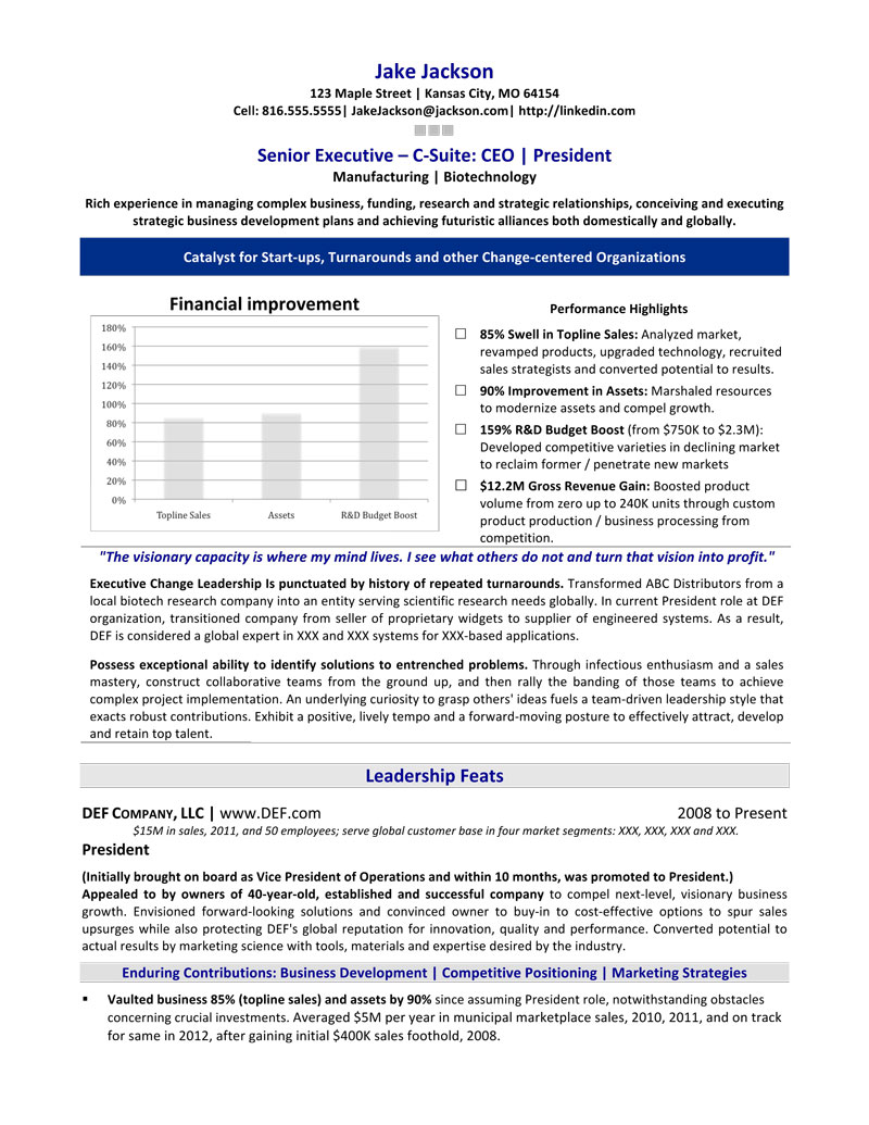 5 Really Good Resume Summary Statement Examples  Really Good Resume Examples