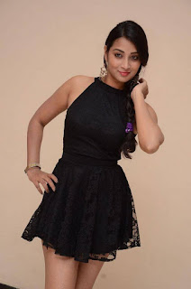 Actress Bhanu Sri Stills in Black Short Dress at Dandu Movie Audio Launch  0012.jpg
