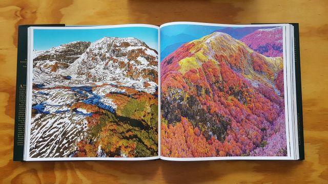 Libro del Parque Nacional Pumalín