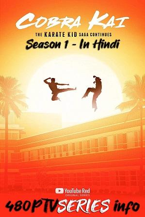 Watch Online Free Cobra Kai Season 1 Full Hindi Dual Audio Download 480p 720p All Episodes