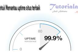 Tool  Terbaik untuk Memantau Uptime Situs Kamu