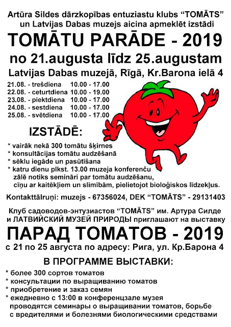 клуб Томат, Рига, помидоры, афиша