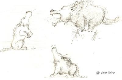 recherche de personnage, vieux loup bête et méchant