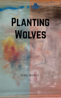 Neda Disney, Planting Wolves, novel in stories, magical realism,  dark humor