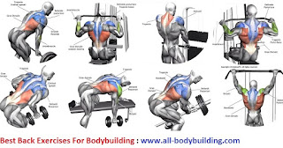 Exercises for lower back pain – lower back exercises