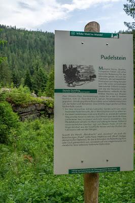 Premiumwanderweg Murgleiter | Etappe 4 von Schönmünzach nach Baiersbronn | Wandern nördlicher Schwarzwald 21