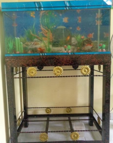 Model Rak Aquarium