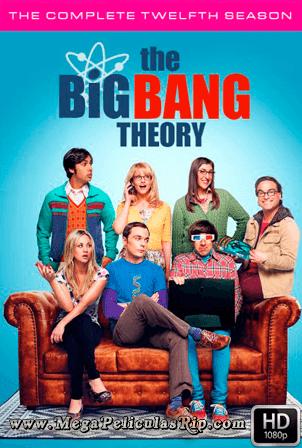 The Big Bang Theory Temporada 12 [1080p] [Latino-Ingles] [MEGA]