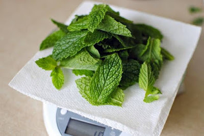 scar removal using mint leaves