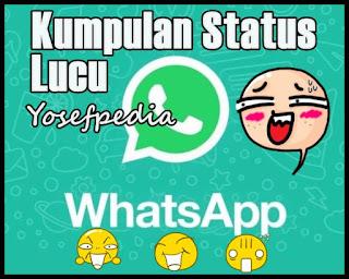 Status WA ( whatsapp ) Lucu