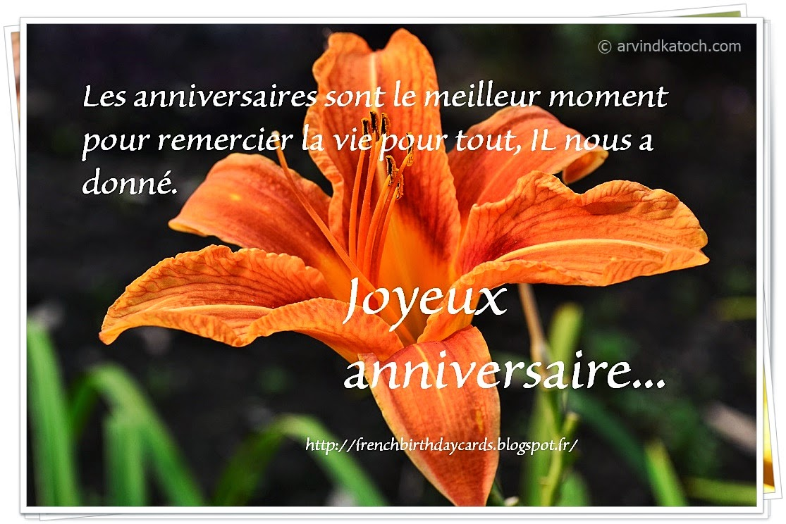 life, french birthday card, lily flower, flower card,