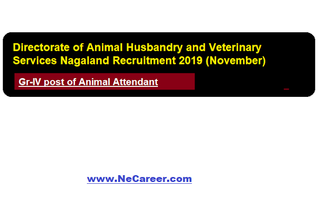 Directorate of Animal Husbandry and Veterinary Services Nagaland Recruitment 2019 (November)